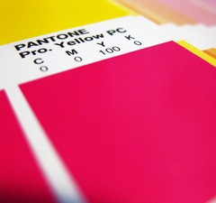 6 Tips for Document Binding Digital Print